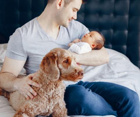 Hund und Baby: Das erste Kennenlernen