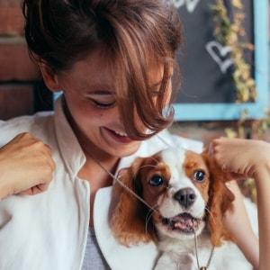 Bester Alternative für eine Hundepension in Deiner Nähe