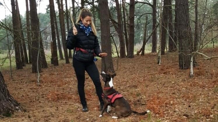 Lauren in Guildford back image
