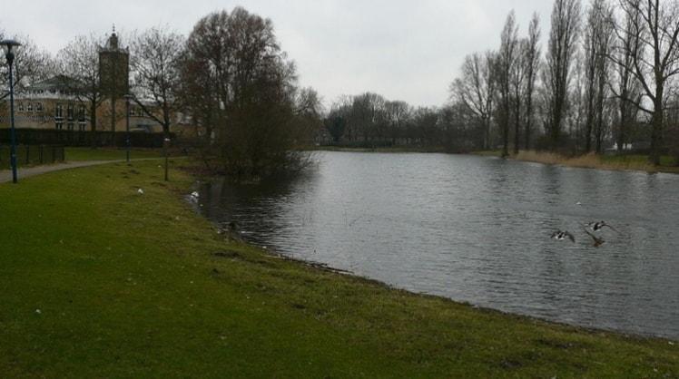 Julia in Breda back image