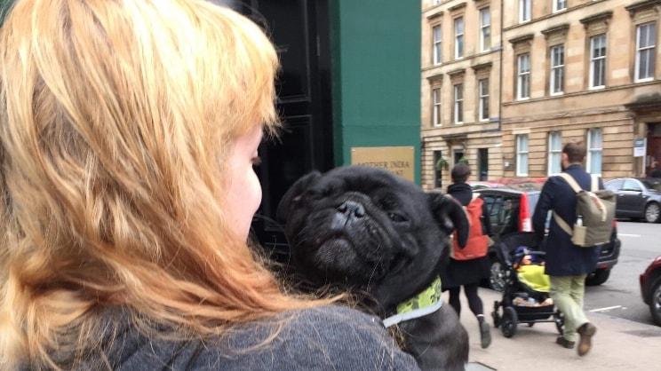 Sophie in Glasgow back image