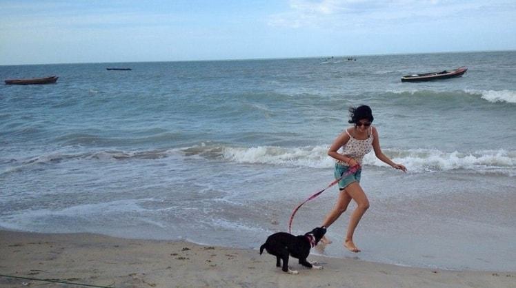 Silvia in Brisbane back image