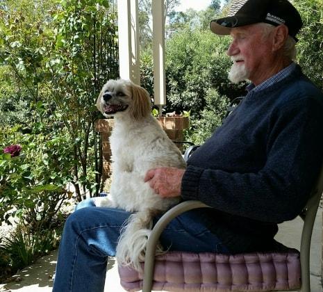 Peter in Kangaroo flat, bendigo back image