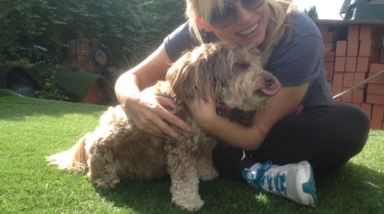 Irene | Pet sitter in Hertfordshire | Pawshake.co.uk