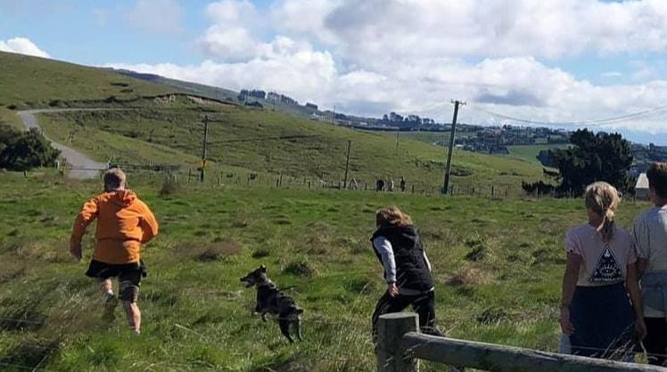 Joshua in Christchurch back image